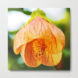 Red Vein Indian Mallow In Bloom | Watercolor Painting Metal Print