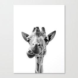 Giraffe Portrait Black and White Canvas Print