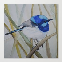 Blue Bird (Sold - original) Canvas Print