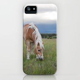 Blonde Beauty iPhone Case