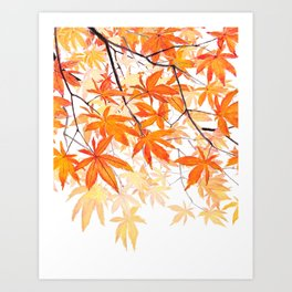 orange maple leaves watercolor Art Print