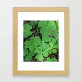 Luck Framed Art Print