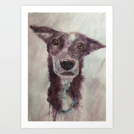 Parson, the cattle dog Art Print