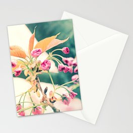 Welcome to Spring Stationery Cards