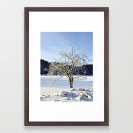 Winter Wonderland I Framed Art Print