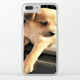 puppy Clear iPhone Case