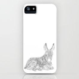 Baby Donkey iPhone Case
