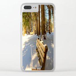 Park Bench in the Winter Clear iPhone Case