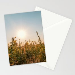 Uncultivated field in the Lomellina countryside at sunset full of yellow flowers Stationery Cards