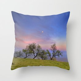 Almonds and Moon Throw Pillow
