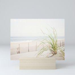Beach Grass Coastal Photography, Seashore Jersey Shore Photograph Mini Art Print