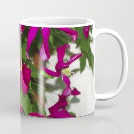 Clematis viticella Mme Julia Correvon Coffee Mug