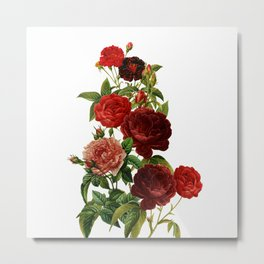 Vintage & Shabby Chic - Red Roses Metal Print