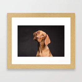 Dog Head Tilt (Pet Portrait) Framed Art Print