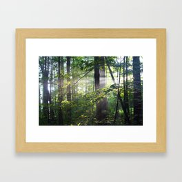 Cabin Light Framed Art Print