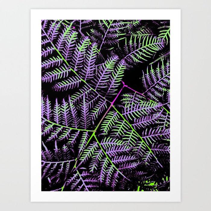 Purple & Green Bracken Art Print