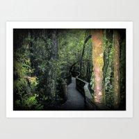 parks Art Prints featuring Franklin - Gordon  National Parks by Chris' Landscape Images & Designs