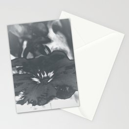 Bloom in Platinum Tone Stationery Cards