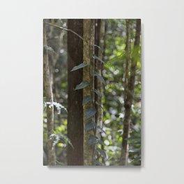 Forest Vine Metal Print