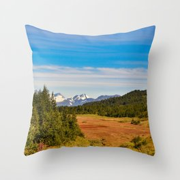 Chugach State_Park, Kenai_Peninsula, Alaska Throw Pillow