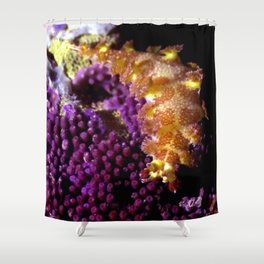 Unidentified Shower Curtain
