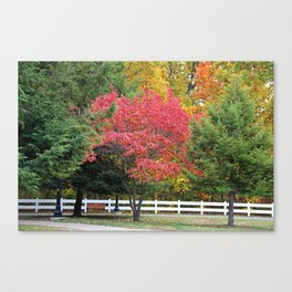 The First Time We Met Canvas Print