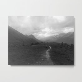 Canadian Rockies Trail Near Peyto Lake Metal Print