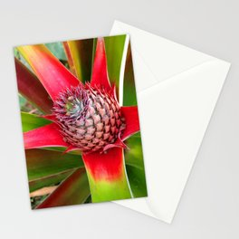 Delicious Beginnings Stationery Cards