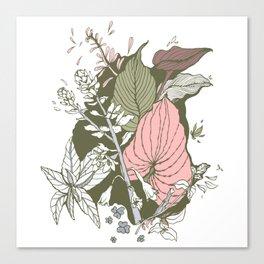 Garden Greenery - Pink Canvas Print