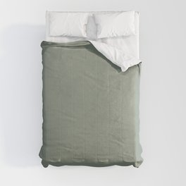 Plain Light Green with Soft Relaxing Texture  Comforters