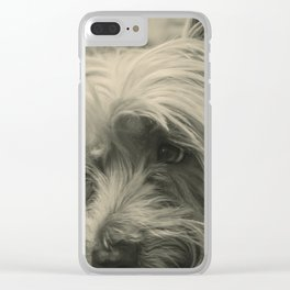 Puppy waiting for his partner Clear iPhone Case