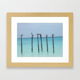 Birds Eye View Framed Art Print