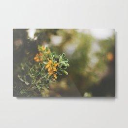 Raw nature Metal Print