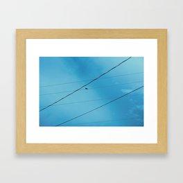 Bird on Wire Framed Art Print
