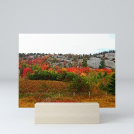 Rock Side Fall Colors Mini Art Print