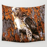 hawk Wall Tapestries featuring Cooper's Hawk by Judy Palkimas