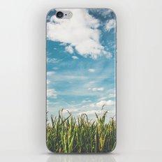 Green Field Blue Sky iPhone & iPod Skin
