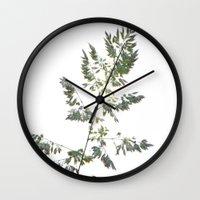grace Wall Clocks featuring GRACE by Teresa Chipperfield Studios