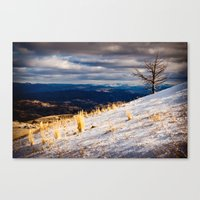 one tree hill Canvas Prints featuring One Tree Hill by Nicholas Graves