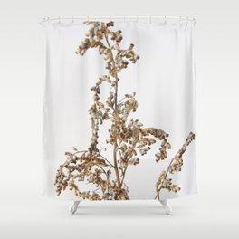 Florales · plant end 1 Shower Curtain