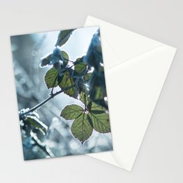 Freezing over Stationery Cards