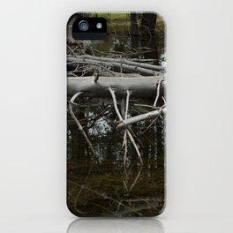 Mirror Pond iPhone Case