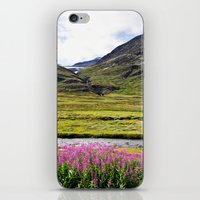 sweden iPhone & iPod Skins featuring SWEDEN PINK by Hail Of Whales