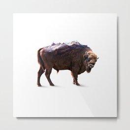 Bisons peak Metal Print