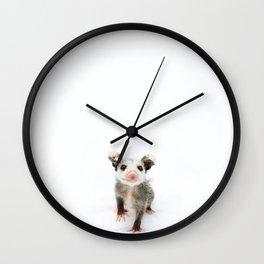 Baby Opossum Smile Wall Clock