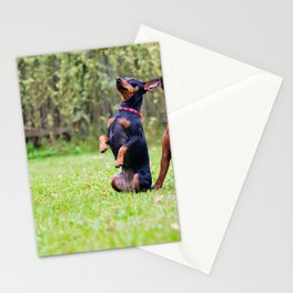 Outdoor portrait of two a miniature pinscher dogs sitting on the grass Stationery Cards