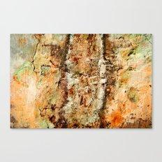 Metal Texture 1001 Canvas Print