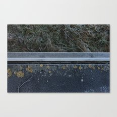 Frosty Walk Canvas Print