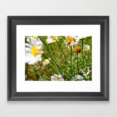 Happy Flowers Framed Art Print
