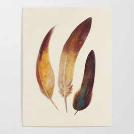 Three Feathers Poster